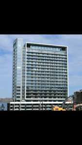 1 bedroom apartment for rent May-August, downtown halifax
