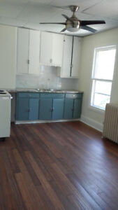 Bright and Spacious- Real Gem -1 Bdrom near James North