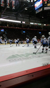 Spits vs Peterborough Thursday--- ON  THE  GLASS