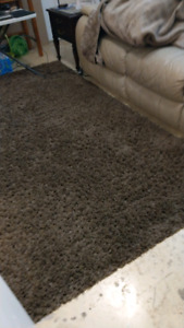 10x8 high shag brown carpet bought from costco $100.00