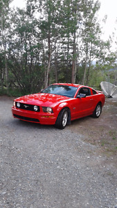 2007 Ford Mustang GT Coupe (2 door) in Pristine Condition