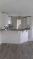 Carpenter with 15 years experience!