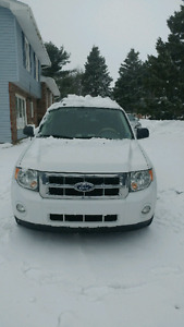 2010 ford escape , Brand new studded winter tire!!