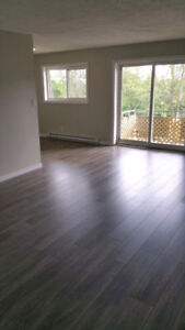 ***STUNNING TOTALLY RENOVATED 2 BDR Apt for rent in Belleville**