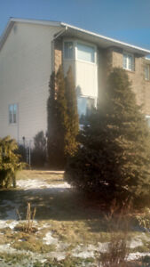 Top Location..Gorgeous Townhouse..beautiful fenced yard!