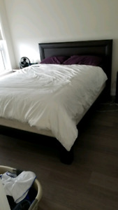 Structube Queen Size Bed Frame