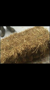 Small square bales of straw