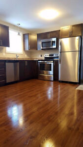 Above ground 1 bedroom in Mount Pearl