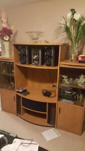 TV stand and adjustable shelving