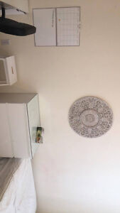 Furnished bedroom downtown, quick bus ride from campus London Ontario image 3