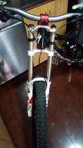 Dh bike Cambridge Kitchener Area image 5