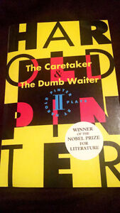 The caretaker and the dumb waiter