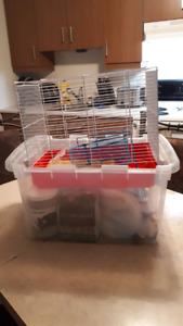 Cage à hamster avec accessoires + copeaux de ripe