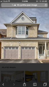 Basement Apartment for Rent At Markham