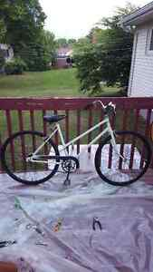 Fixed up bike for sale.