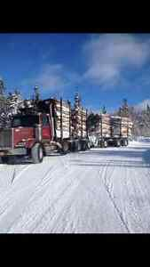 Western Star 4600 with Self loader