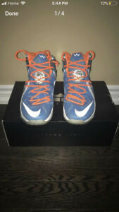 Lebron Nike Shoes Size 10, ONLY USED INDOORS AND KEPT CLEAN