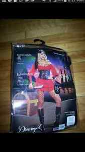 Women's Pirate Wench Costume (small)