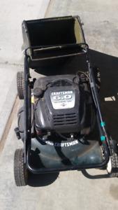 snowblower & lawn mower