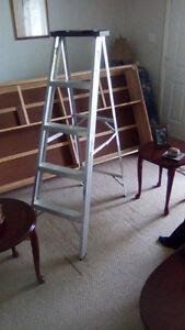 Step Ladder(tall)
