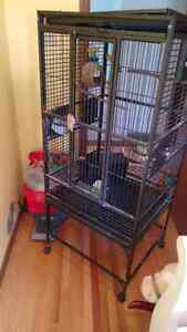 Large bird cage in good condition