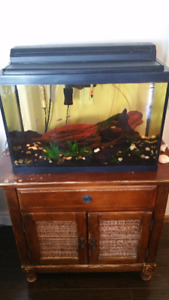 AQUARIUM AND FISH WITH CABINET