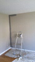 Very experienced painter available