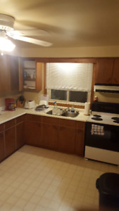 Clean quiet room for rent March 1st