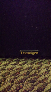 Paradigm PDR -12.  * SOLD *