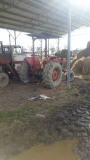 Massey Ferguson 168 Hillwood George Town Area Preview