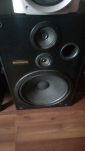 Pioneer 15inch