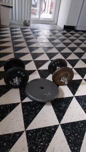 Poids libre / free weights