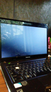 Laptop Toshiba Satellite T135- S1309 (without hard drive)
