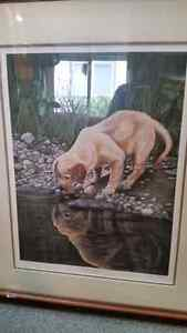 """""""Puppy Reflections"""" Ducks Unlimited"""