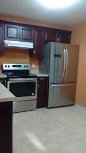 Walk-out basement for rent close to Dominion / Ojibway