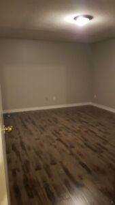 1 BDRM and STUDIO (New )BASEMENT for RENT Near SCT