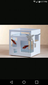 Umbra FishHotel Mini Aquarium betta tank!!