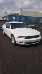 Priced to Sell - 2011 Ford Mustang Coupe