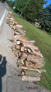 free firewood.  Hardwood.  Nicely cut. by the road.