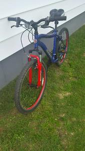 Schwinn 18' Mountain Bike
