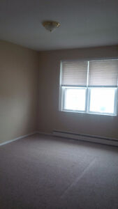 .SPACIOUS TWO BEDROOM AVAILABLE IN KITCHENER. Kitchener / Waterloo Kitchener Area image 4