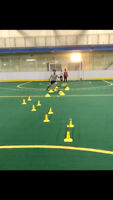 One on One/Group Soccer Training with an Ex Pro!!!
