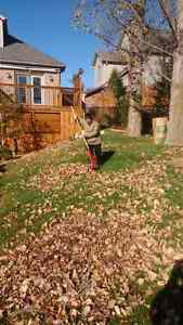 $5 a bag leaf and lawn clean up London Ontario image 2