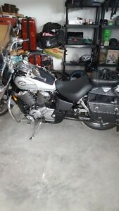 ***MINT CONDITION*** Honda Shadow 750 Limited Edition St. John's Newfoundland image 2