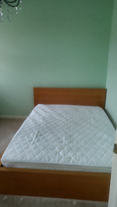 BEDROOM for rent Brampton - Chinguacousy/Williams Pkwy