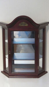 Display case cabinet wall hanging with glass door and shelves