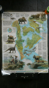 Dinosaur poster (laminated & double-sided)