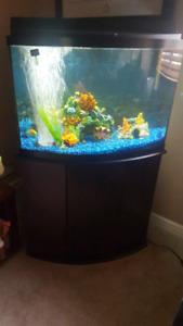 36 GALLON BOW FISH TANK WITH STAND