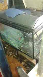 aquariums with stands 10g/30g/40g Belleville Belleville Area image 4