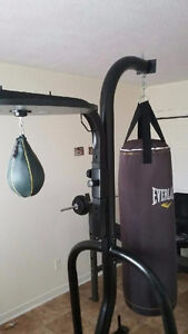 Everlast 2 in 1 Heavy Bag and Speed Bag with Gloves and Mats